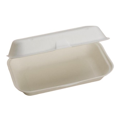 Food Box Large 23x14x6,5 cm