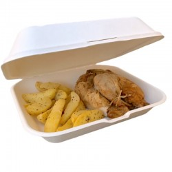 Food Box Extra-Large 23x19x7,5 cm